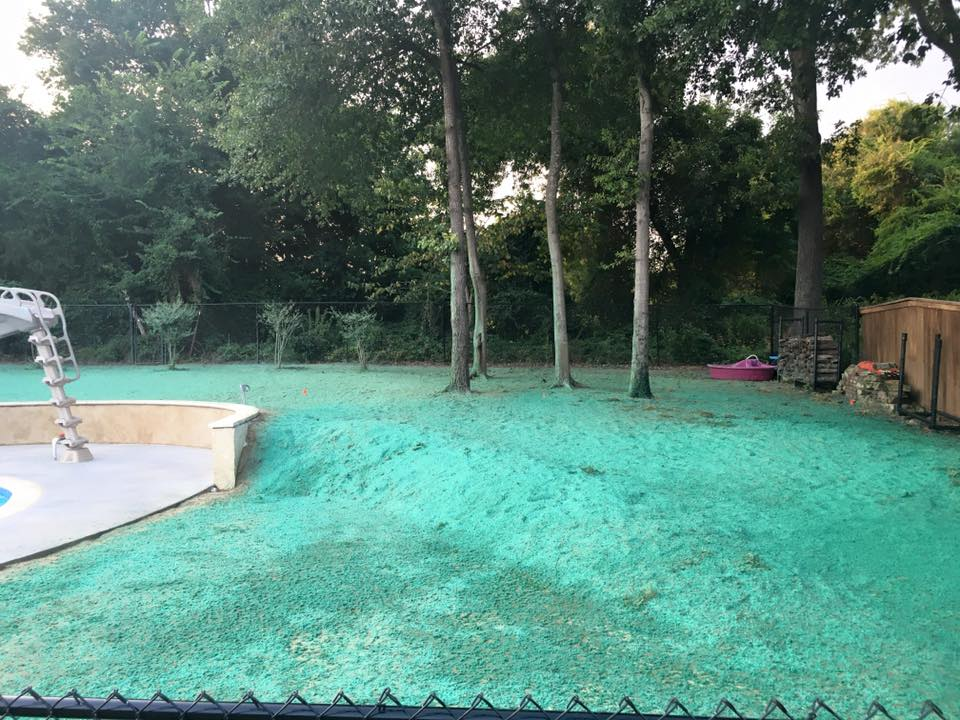 The Benefits Of Hydroseeding Need Grass Now