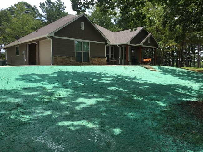 What to Look For in a Hydroseeding Contractor